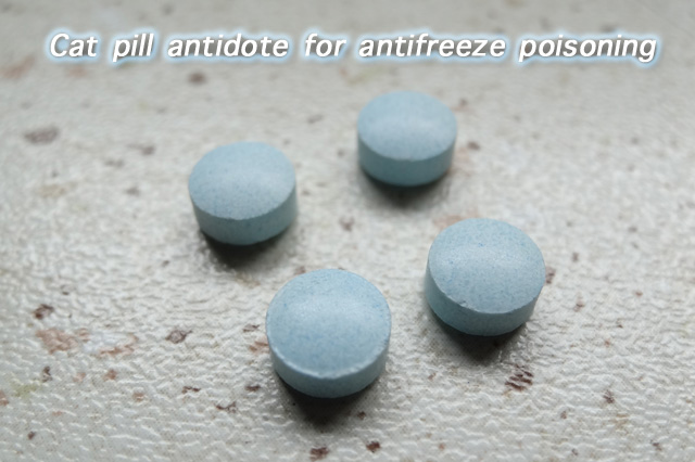 Cat pill antidote for antifreeze poisoning