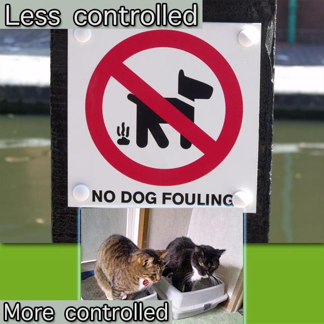Dog poo versus cat poo