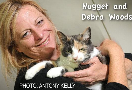 Nugget a rescued cat