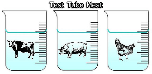 Test tube meat