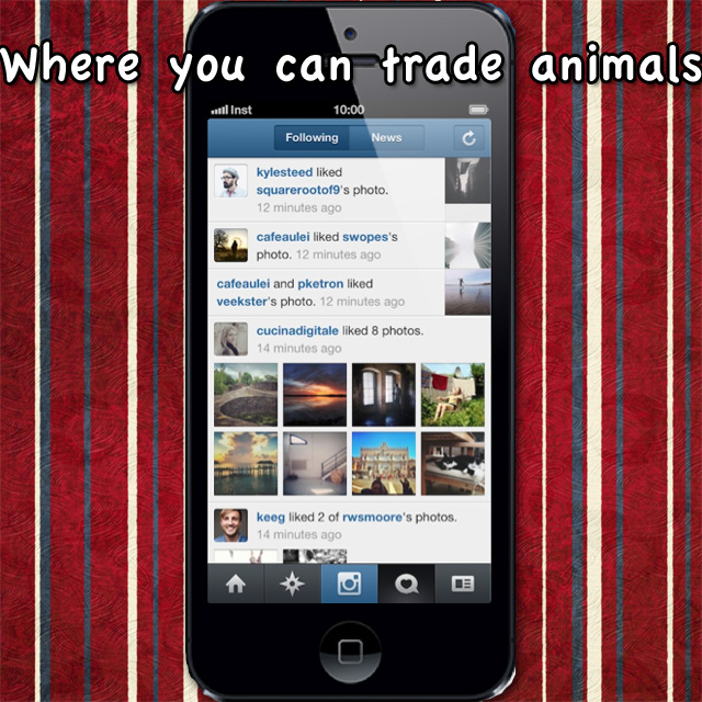 Trading animals on Instagram