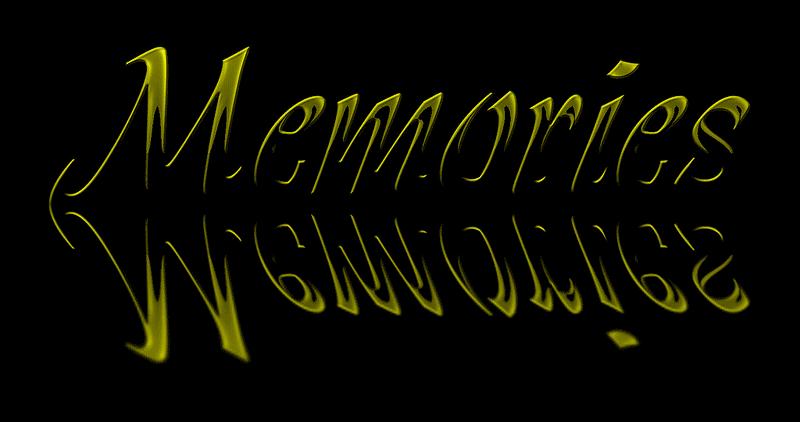 Memories of our deceased cat