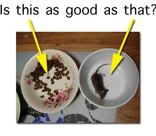 Cat Food Labelling