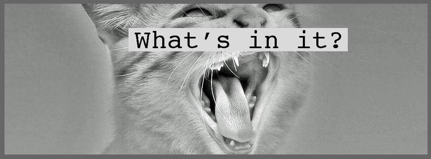 Cat saliva