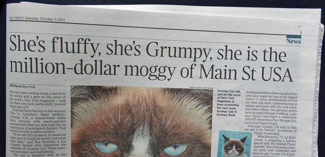 Grumpy cat is a property worth several million dollars