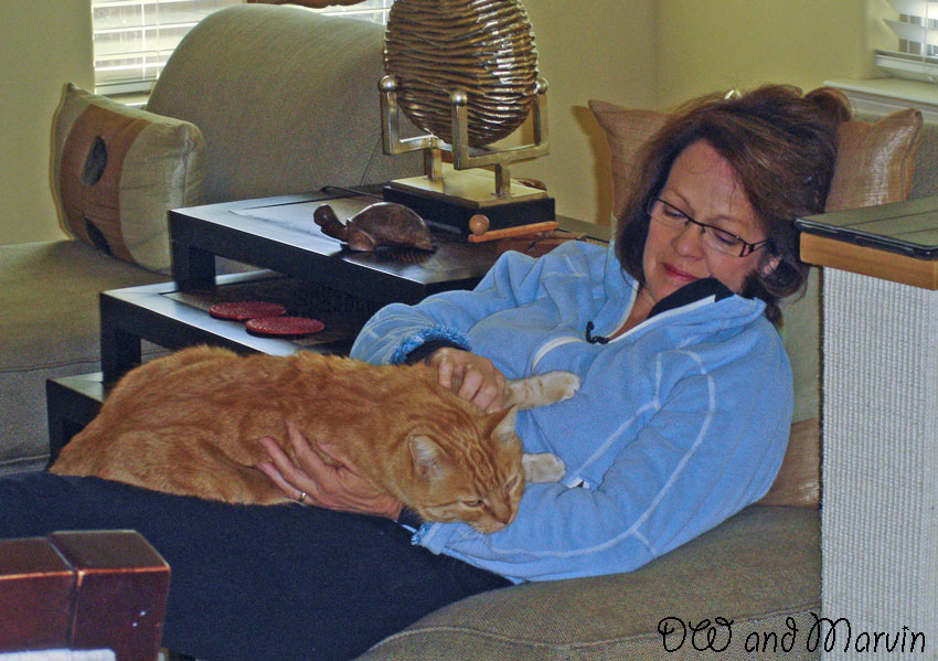 Lady and her ginger tabby male cat