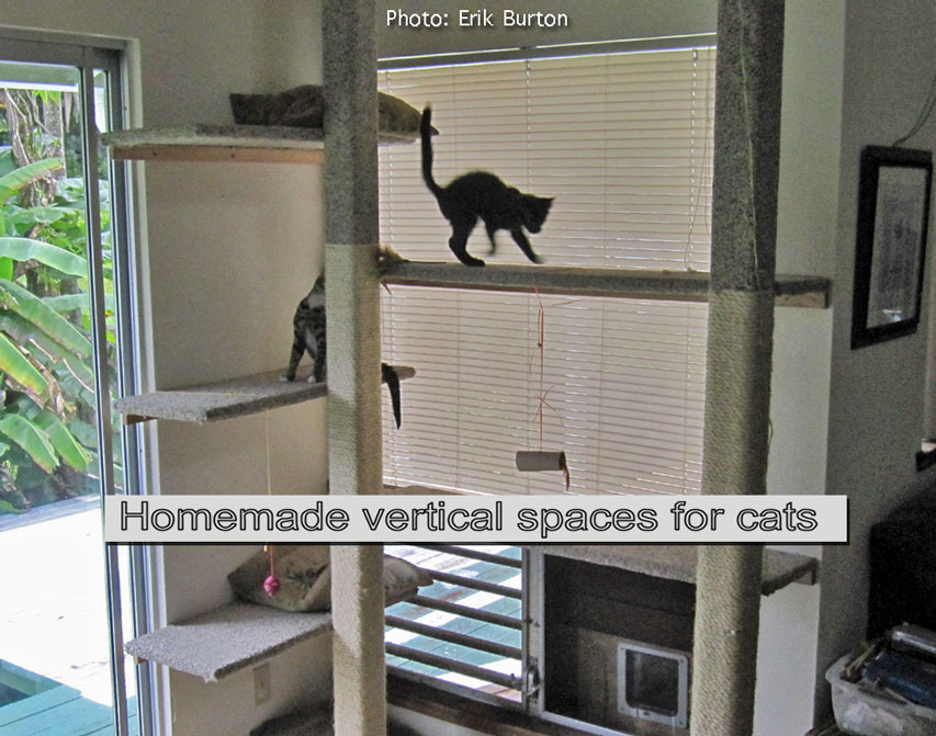 Homemade vertical spaces for cats