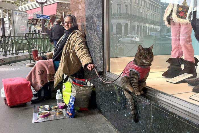 Street woman and her cat