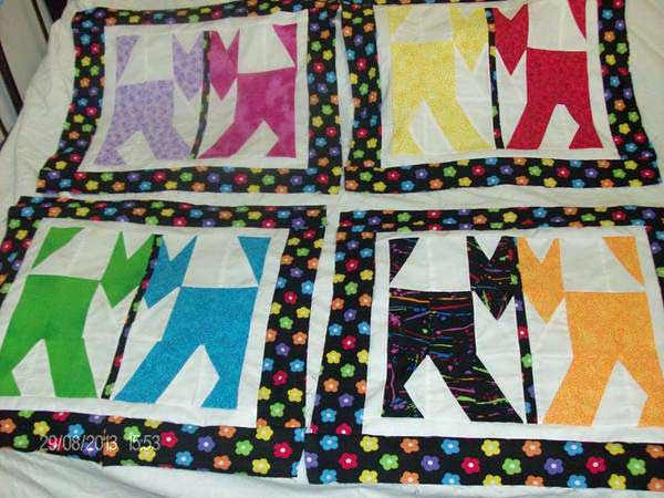 Caterday Quilt