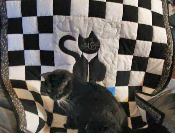 cat-quilt-8