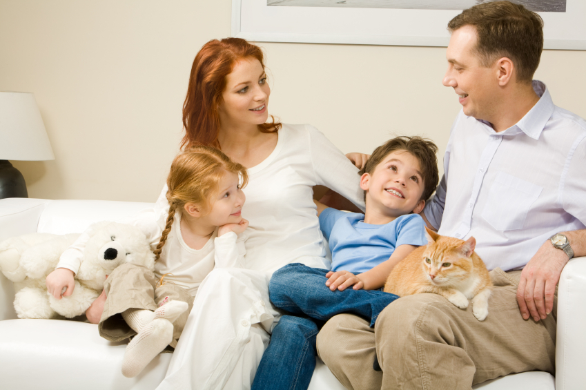 Parenting skills and cats