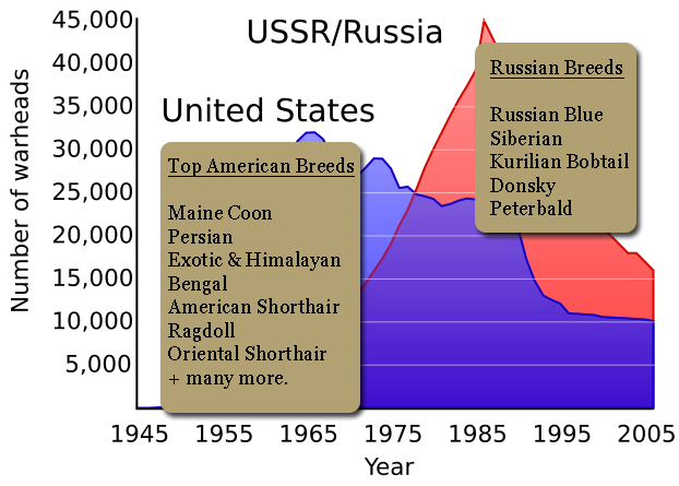 american-versus-russian-cat-breeds