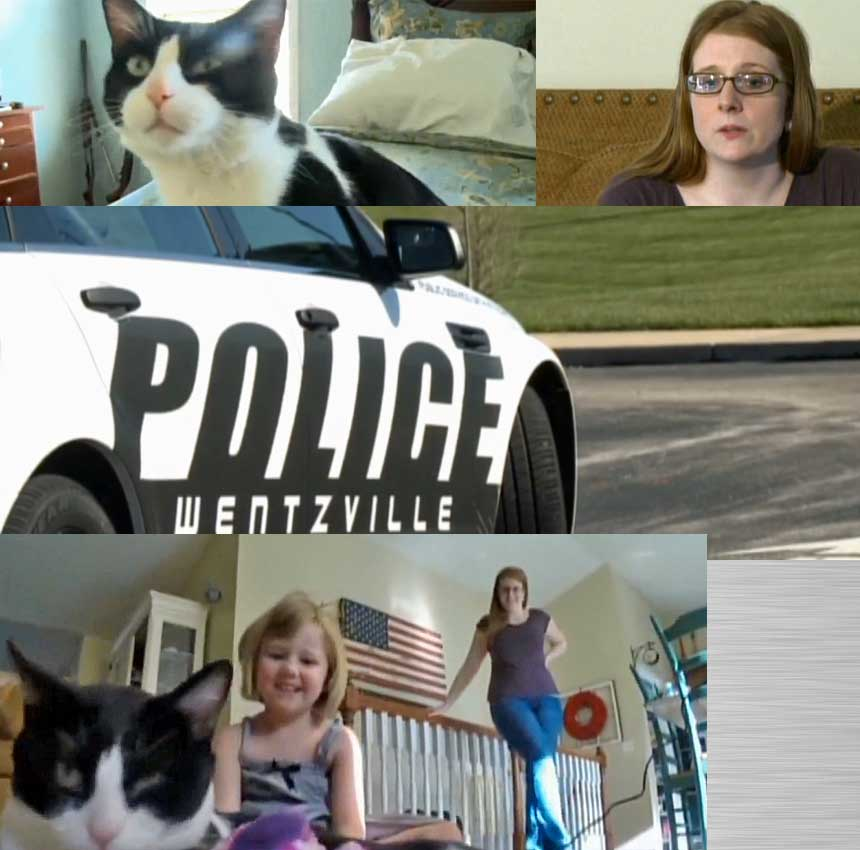 mom arrested because her cat got out of her house