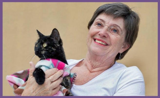 Pat a cat shelter volunteer