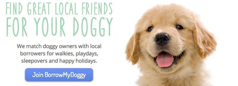 dog ownership sharing