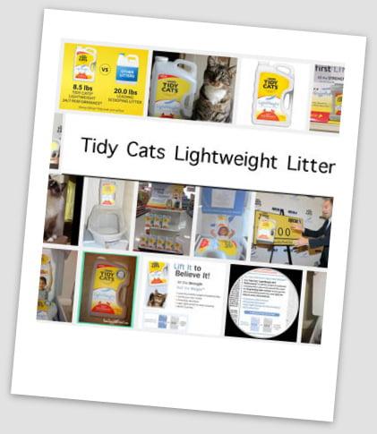Tidy Cats lightweight litter dangerous to cats?