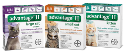 Advantage flea treatment