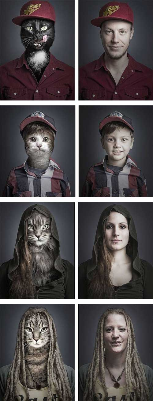 cats dressed in their owner's clothes