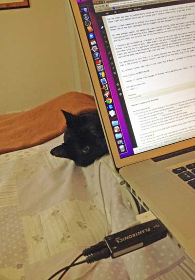 Charlie waits patiently but comfortably for me to finish publishing this article.