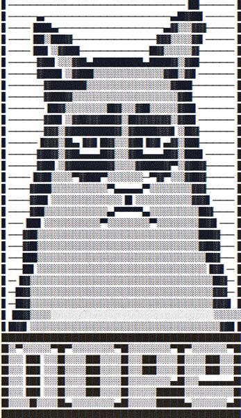 Grumpy cat ascii image