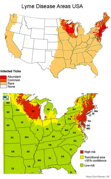 Lyme disease areas USA