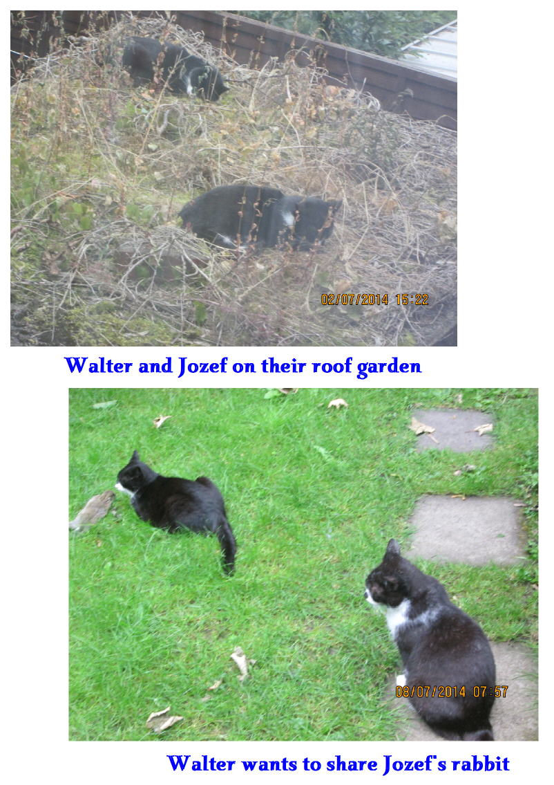Walter and Jozef