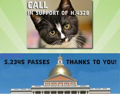 Change in Massachusetts for animal welfare