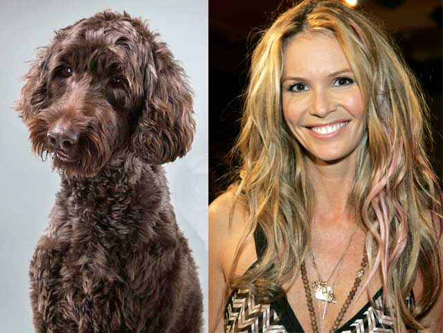 Elle Macpherson and her dog Bella looking alike