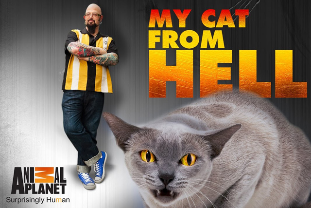 Jackson Galaxy cat from hell promo picture