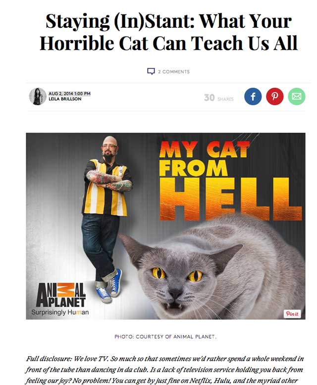 Jackson galaxy cat- from hell picture