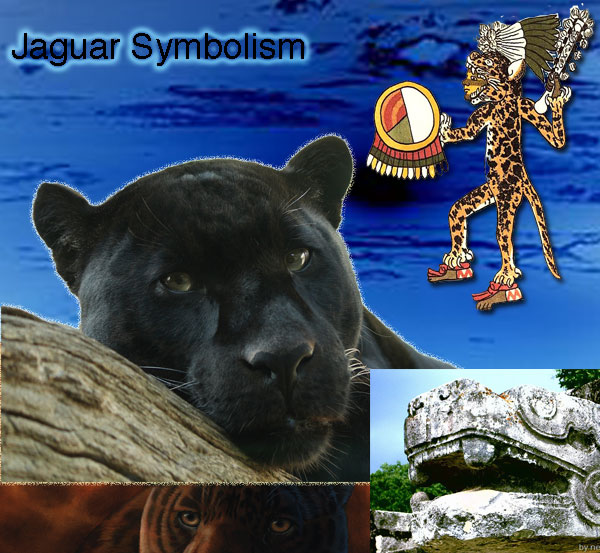 Jaguar animal symboism