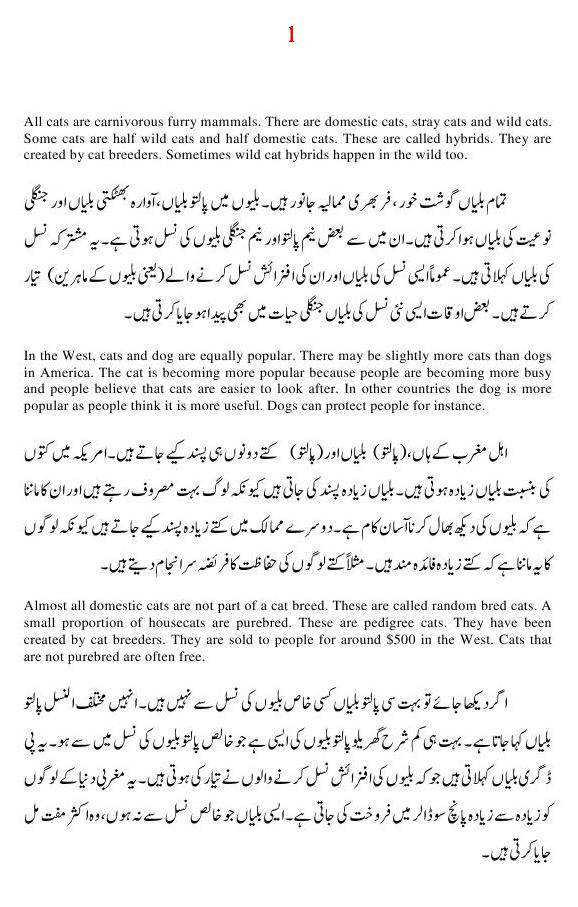 Essay On Cats In Urdu  Essay On Modern Science also Proposal Essay Template  Essay Proposal Examples