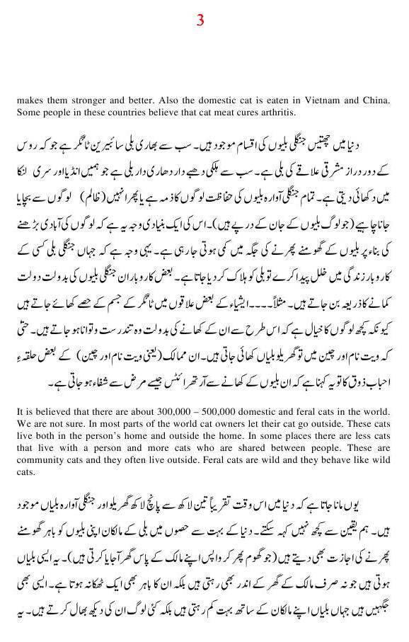 Essay on cats in Urdu