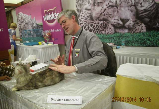 "Dr Johan Lamprecht a WCF All breeds judge. He is shown examining feline ""Christina"" owned by Mrs Meher Ansari"