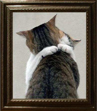 Love cat style