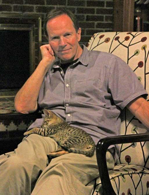 F2 Savannah cat on my lap