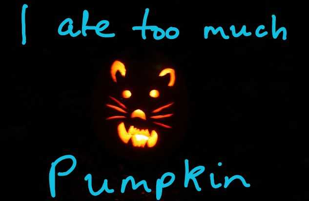 Pumpkin for cat constipation and diarrhea