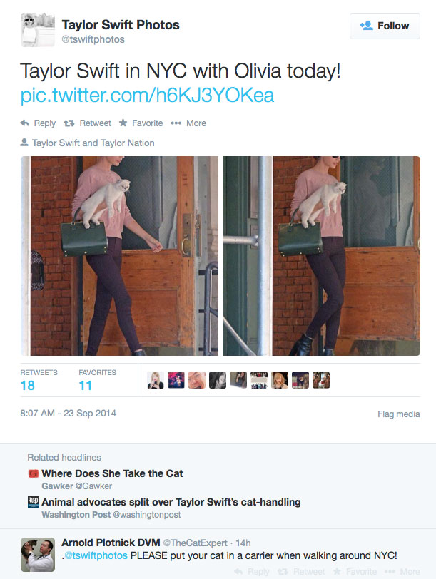 Taylor Swift walks out of her apartment into NYC with her cat under her arm