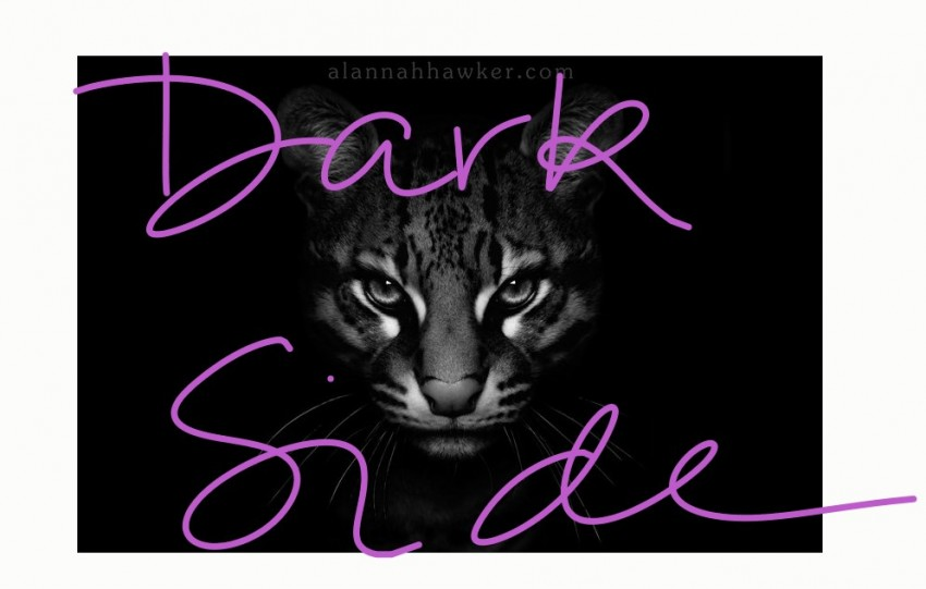 The dark side of cat rescue