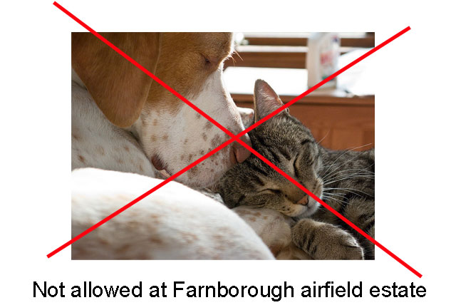 EU directive affects cat and dog ownership UK