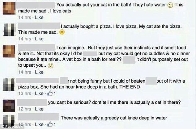 Cat abuse FB comments