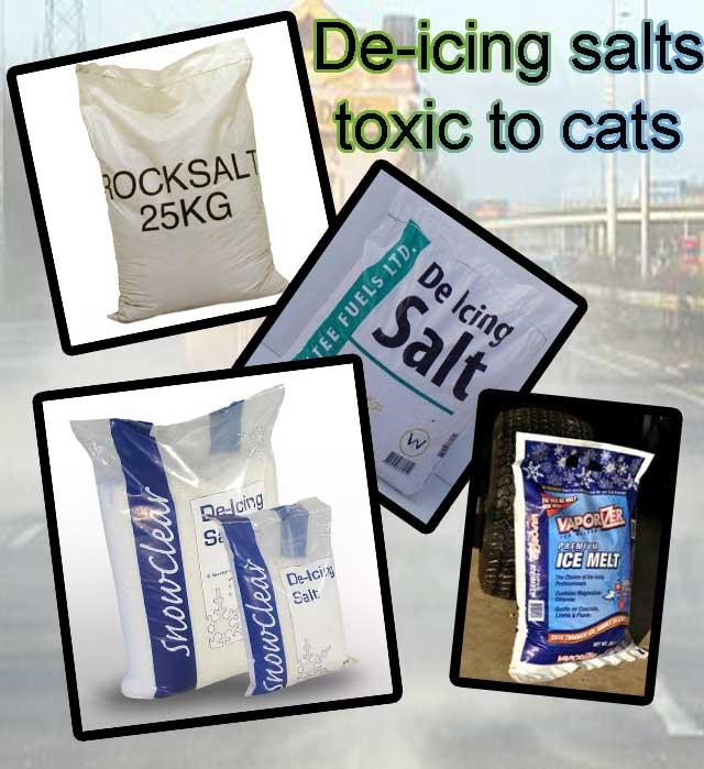 De-icing salts toxic to cats
