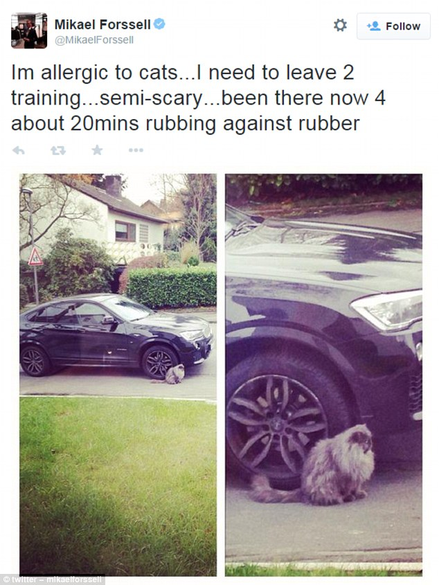 Footballer was scared of a cat