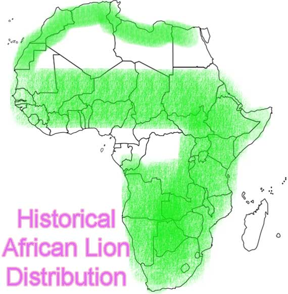 Historical African Lion Distribution