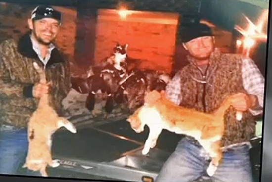 Domestic cat hunters USA