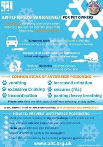 Antifreeze poster