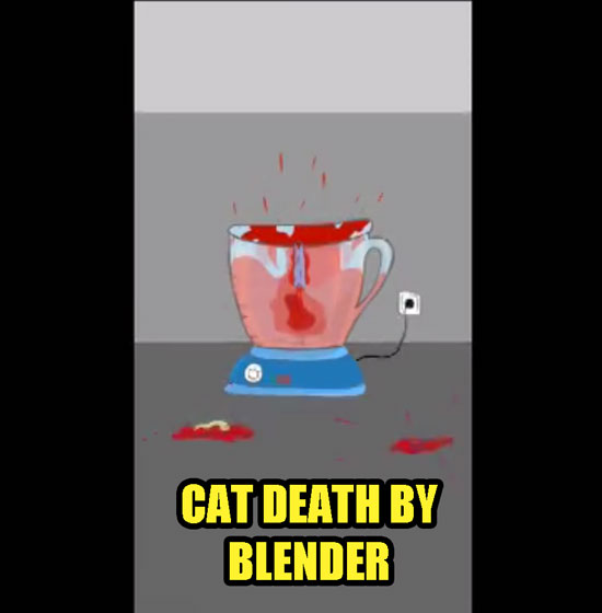 Cat death by blender from gaming app