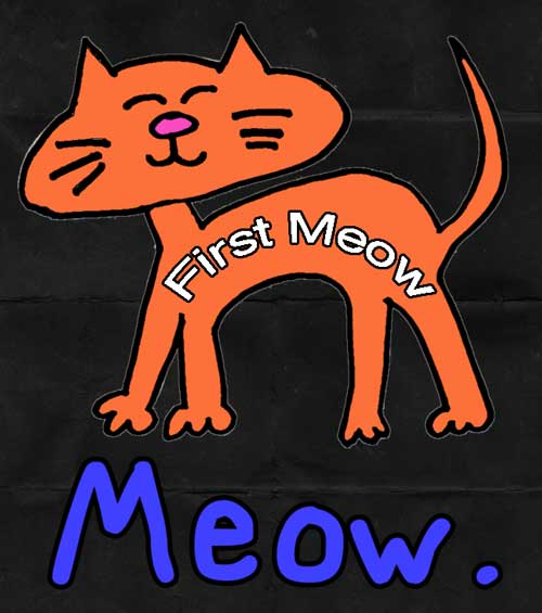 First meow