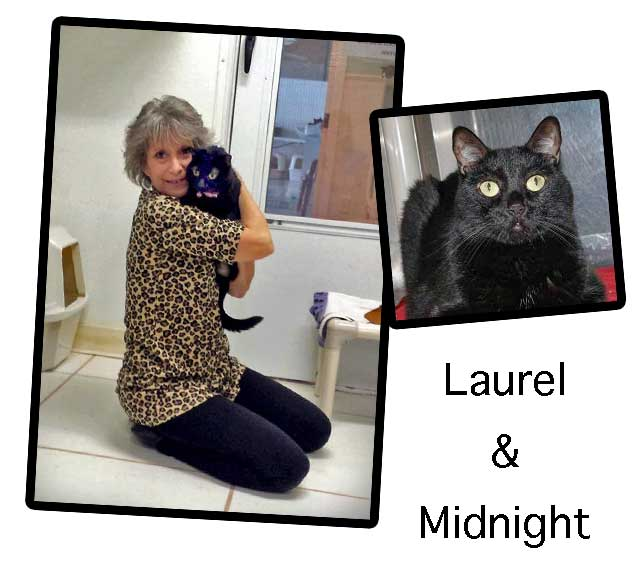 Laurel and Midnight