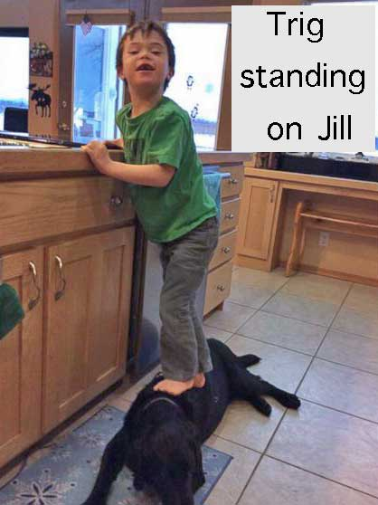 Trig standing on Jill the family dog